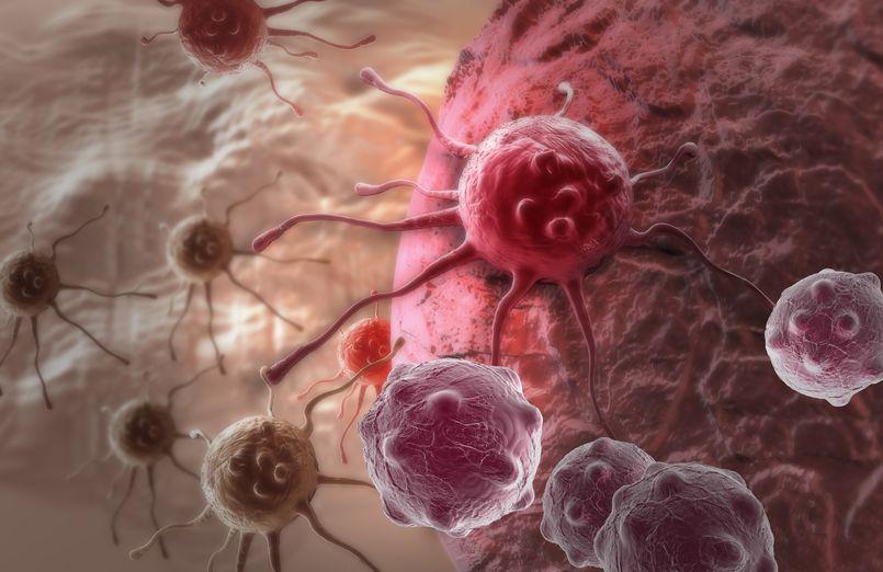 Dietą w raka. Poznaj zasady odżywania antynowotworowego